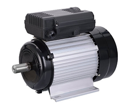YC YL series motors