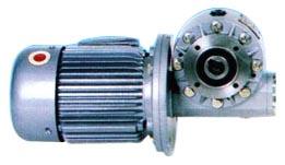 WJ Series Worm Gear Speed Reducer WJ